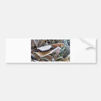 spooningleaves.jpg etiqueta de parachoque