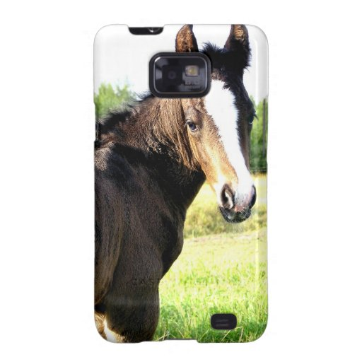 Sport Colt Galaxy S2 Cover