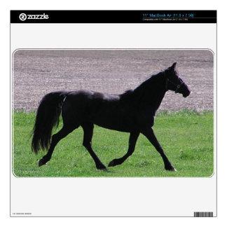"Sport Horse 11"" MacBook Air Decal"