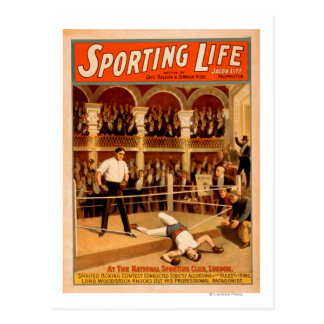 """""""Sporting Life"""" Boxing Theatrical Play Poster Postcard"""