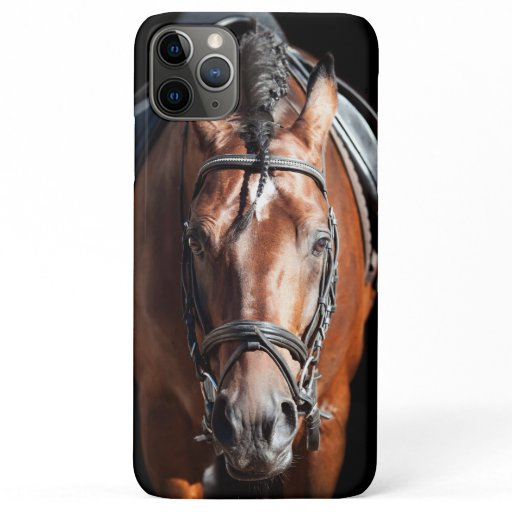 sportive bay horse iPhone 11 pro max case
