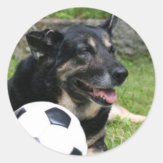 Sportsdog Stickers