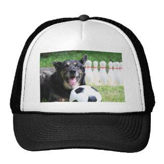 Sportsdog Trucker Hat