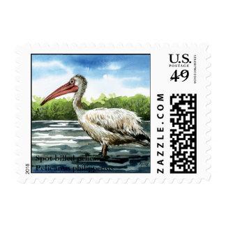 spot billed pelican, Spot billed pelicanPelican... Stamps