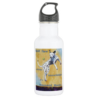 Spot Flew Stainless Steel Water Bottle