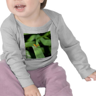 spot ladybird t-shirts