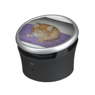 Spot on this Kitten Bluetooth Speaker