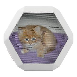Spot on this Kitten White Bluetooth Speaker