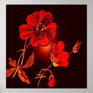 Spotlight on Red Flower,Brown & Black Back Poster