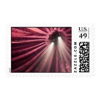 Spotlight under the Big Top Circus Postage
