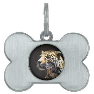 Spots and Shadow Pet Tag