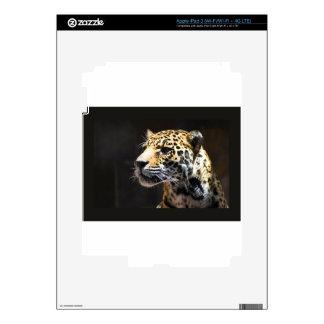 Spots and Shadow iPad 3 Skins