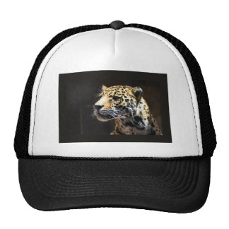 Spots and Shadow Trucker Hat