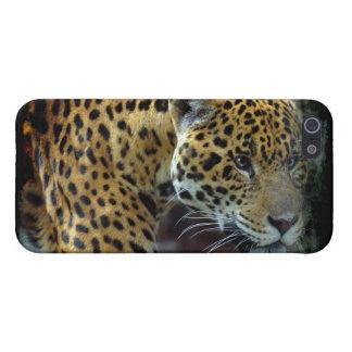 Spotted Aztec Jaguar Wildlife Big Cat Photo iPhone SE/5/5s Case