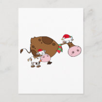 Spotted Calf By A Mom Dairy Cow With Santa's Hats Holiday Postcard