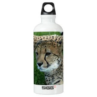 Spotted Cheetah SIGG Traveler 0.6L Water Bottle