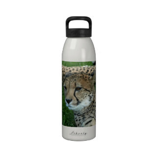Spotted Cheetah Water Bottle