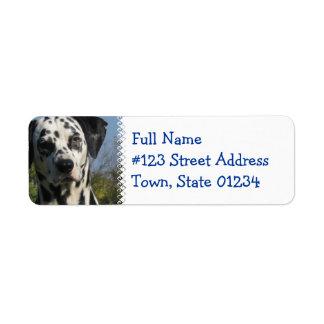 Spotted Dalmatian Return Address Label