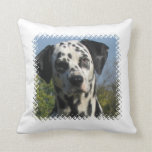 Spotted Dalmation Pillow