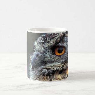 Spotted Eagle Owl - Mug