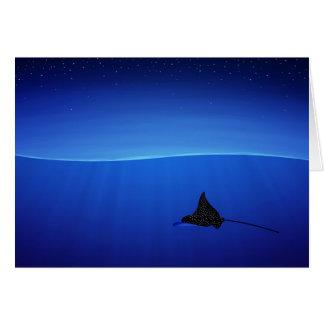 Spotted eagle ray, Aetobatus narinari Card