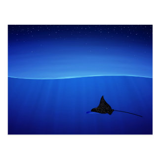Spotted eagle ray, Aetobatus narinari Postcard