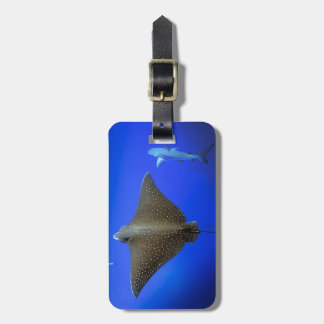 Spotted eagle ray and Galapagos reef shark Tag For Luggage