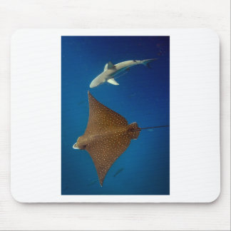 Spotted eagle ray and reef shark underwater mouse pad