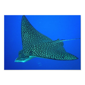 Spotted Eagle Ray Card