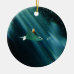 spotted eagle ray morning light christmas ornaments