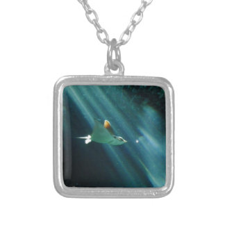 spotted eagle ray morning light silver plated necklace