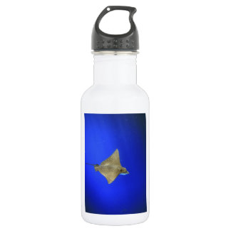 Spotted eagle ray swimming underwater Galapagos Stainless Steel Water Bottle