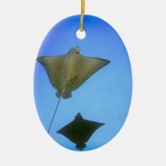 Spotted eagle rays underwater Galapagos Islands Ceramic Ornament