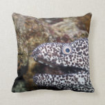 spotted eel right side aquarium animal pillow