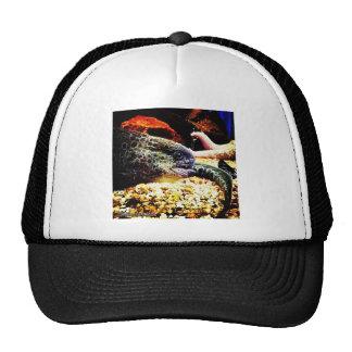 Spotted Eel Trucker Hat