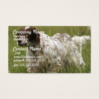 Spotted English Setter Dog Business Cards