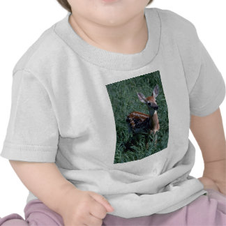 Spotted Fawn T Shirt