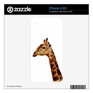 Spotted Giraffe Friends iPhone 4S Decals
