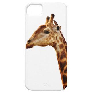 Spotted Giraffe Friends iPhone SE/5/5s Case