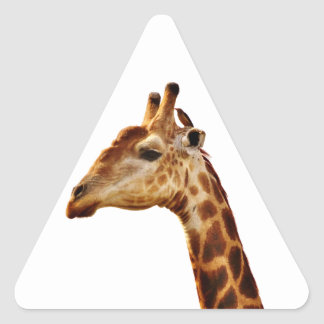 Spotted Giraffe Friends Triangle Sticker