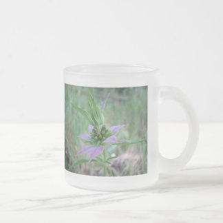 Spotted Horsemint, M. punctata Frosted Glass Coffee Mug