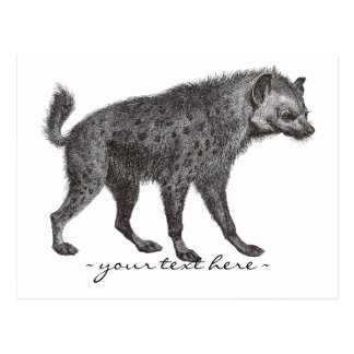 Spotted Hyena Post Card