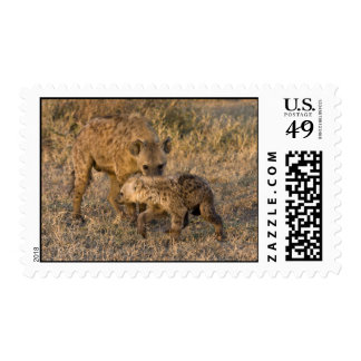Spotted Hyena Postage Stamps