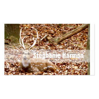 Spotted Male Buck Deer With Antlers in Fall Forest Business Cards
