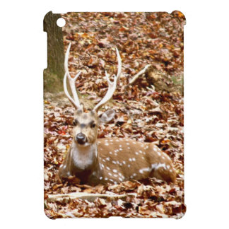 Spotted Male Buck Deer With Antlers in Fall Forest Case For The iPad Mini