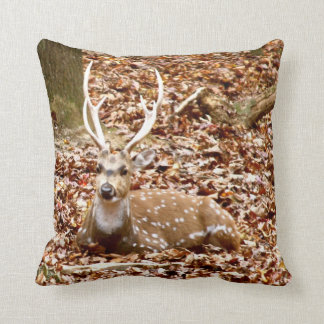 Spotted Male Buck Deer With Antlers in Fall Forest Pillow