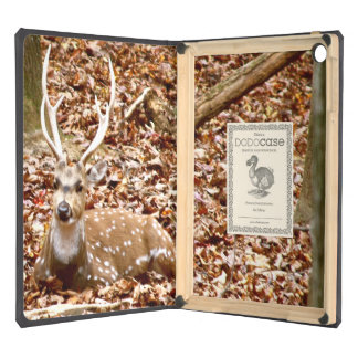 Spotted Male Buck Deer With Antlers in Woods Cover For iPad Air