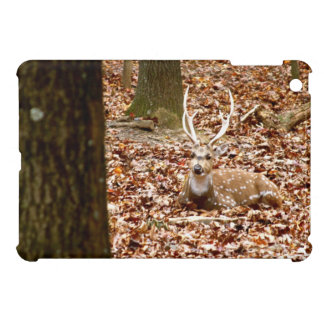 Spotted Male Buck Deer With Antlers in Woods iPad Mini Cover