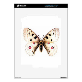 Spotted moth decal for the iPad 2
