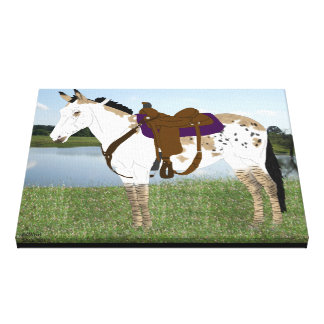 Spotted Mule Canvas Print
